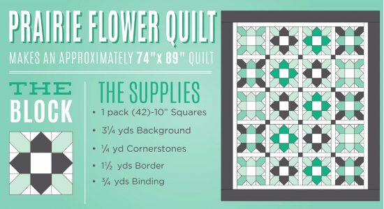 Prairie Flower Quilt Is The New In Quilting Cubby
