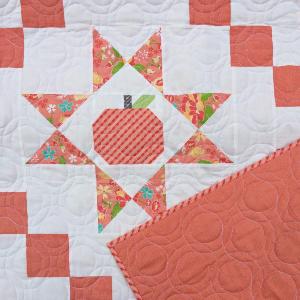 apple-quilt-ohio-quilt-block