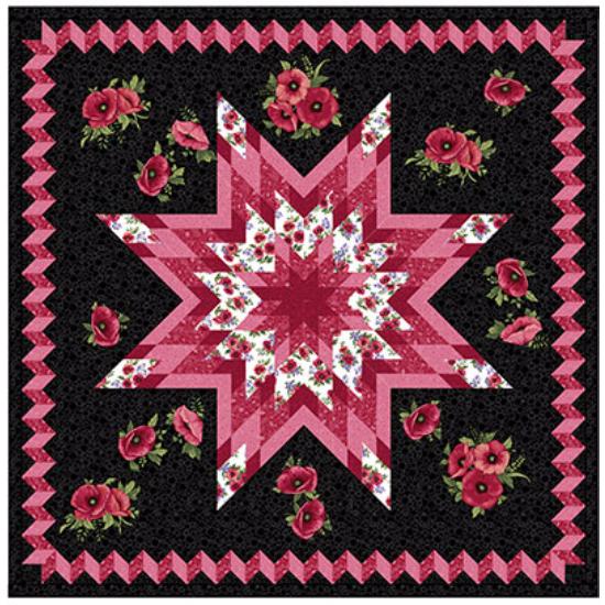 Ann Lauer Stargazing Lone star quilt